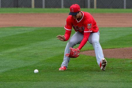 FILE PHOTO: MLB: Los Angeles Angels-Workout