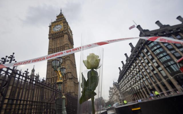Four boxers were attending an event at the Palace of Westminster on Wednesday when the attack took place - AFP or licensors