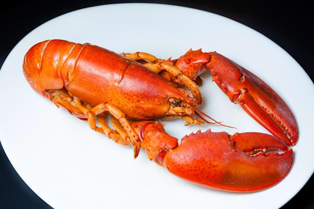 Lobster - one of the strangest things left in an Uber