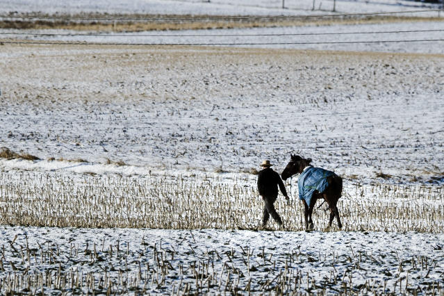 <p>A farmer walks his horse across a baron field in freezing temperatures in Strasburg, Pa., Tuesday, Jan. 2, 2018. (Photo: Matt Rourke/AP) </p>