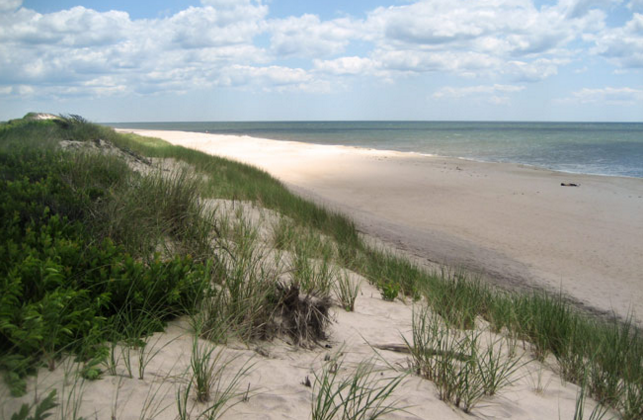 <p>Where: New York</p><p>Fire Island—32 miles long and less than a mile wide—is at the center of the outer barrier islands that hug Long Island, New York. While there are less than 300 permanent island residents, thousands descend on the island each summer. Those visitors enjoy the beaches along the Fire Island National Seashore as well as Robert Moses State Park. There are no paved roads on the island so it won't come as a shock to find out that cars aren't allowed here. You'll arrive by ferry from Patchogue, Sayville, or Bay Shore and while visiting the island you'll rely on foot power to get you to your destination. Fire Island has long been LBGT-friendly, especially its Cherry Grove and Fire Island Pines communities.</p><p>Insider Tip: While most tourists visit from Memorial Day through Labor Day, savvy travelers visit in the fall for leaf peeking and in April and early May for springtime blossoms.</p><p><i>(Photo: Courtesy of discoverlongisland.com)</i></p>