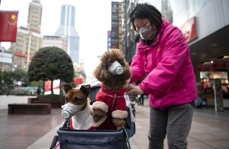 A woman pushes a stroller with two dogs wearing masks along a street in Shanghai on February 19, 2020. - The death toll from China's new coronavirus epidemic jumped past 2,000 on February 19 after 136 more people died, with the number of new cases falling for a second straight day, according to the National Health Commission. (Photo by NOEL CELIS / AFP) (Photo by NOEL CELIS/AFP via Getty Images)