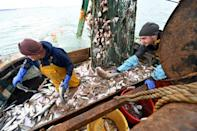 Fishing rights is one of the key issues in the EU-UK talks