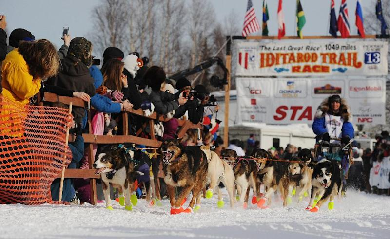 Michelle Phillips leaves the starting line of the Iditarod Trail Sled Dog Race, Sunday, March 3, 2013, in Willow, Alaska. 65 teams will be making their way through punishing wilderness toward the finish line in Nome on Alaska's western coast 1,000 miles away. (AP Photo/The Anchorage Daily News, Bob Hallinen) LOCAL TV OUT (KTUU-TV, KTVA-TV) LOCAL PRINT OUT (THE ANCHORAGE PRESS, THE ALASKA DISPATCH)