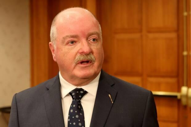 Social Development Minister Bruce Fitch says the homes will offer a 'family-type' situation with wraparound services for the youth living in them.
