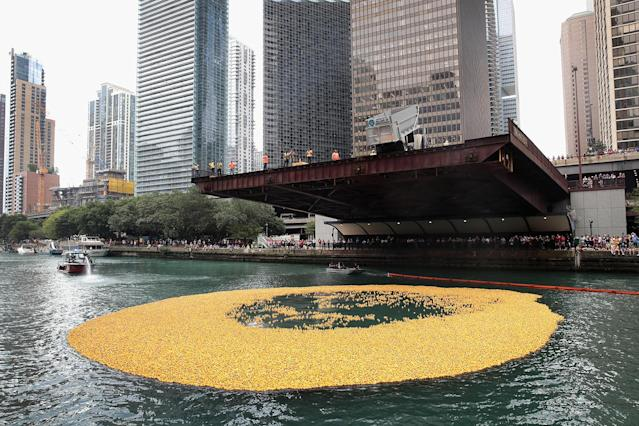<p>Rubber ducks float down the Chicago River during the start of the Windy City Rubber Ducky Derby on August 3, 2017 in Chicago, Illinois. (Photo: Scott Olson/Getty Images) </p>