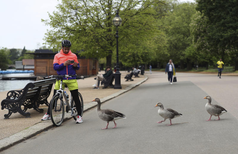 A cyclist watches Greylag geese walk past in a sparsely populated Hyde Park area of central London, as the UK continues in lockdown to help curb the spread of the coronavirus, Sunday May 3, 2020. Many Greylag Geese from eastern Sweden, Finland and east central Europe migrate to winter in southern Europe, some in London. The highly contagious COVID-19 coronavirus has impacted on nations around the globe, many imposing self isolation and exercising social distancing when people move from their homes. (Yui Mok / PA via AP)