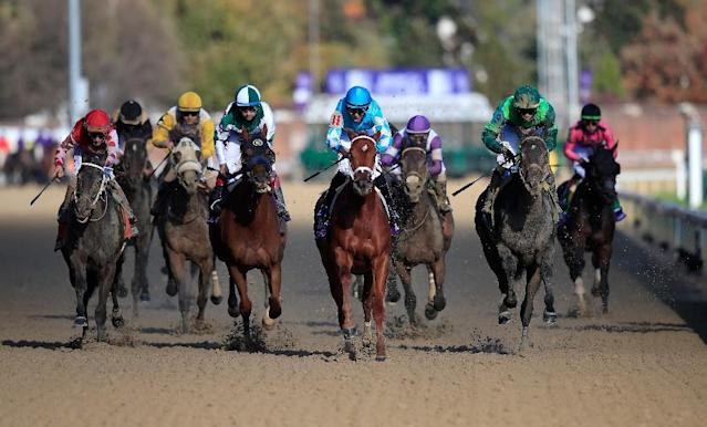 Florent Geroux aboard Monomoy Girl rides to victory in the 2018 Breeders' Cup Distaff at Churchill Downs (AFP Photo/ANDY LYONS)
