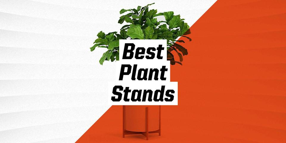 """<p class=""""body-text"""">No doubt you've hopped on the """"more is more"""" plant trend by now, filling every living room shelf or deck ledge with potted greenery. But if you really want to make a statement in your space with your ficus, succulents, or mini palms, a plant stand—or several placed in a tight arrangement—is the way to go. Mixing it up with stands of different styles and heights is how to create a look that's polished and doesn't feel too generic, sort of like creating an accent wall. We're rounded up our favorite options available in the market, so read on for our top recommendations. </p><h3 class=""""body-h3"""">What to Consider</h3><p>Shopping for plant stands is a pleasure, as they're a lovely home accent, and choosing the best option for you is largely based on personal taste, your amount of space, and the size of the plant. The most important thing to look out for is whether the plant stand is intended for indoor or outdoor use (or both). Plant stands are generally made of metal—outdoor pieces are often powder-coated to prevent rust—or wood, sometimes treated to resist moisture. Beyond that, there's a wide variety of sizes and styles, from midcentury-modern to contemporary to traditional.</p><h3 class=""""body-h3"""">How We Chose</h3><p> All of the plant stands below have at least four stars, and the majority of the ones we feature are given average ratings of 4.5 stars and up. As mentioned above, we cover a range of styles and sizes, and offer plant stands spanning multiple price points. Our picks range from about $35 to just over $100, with plenty of options in between. </p>"""