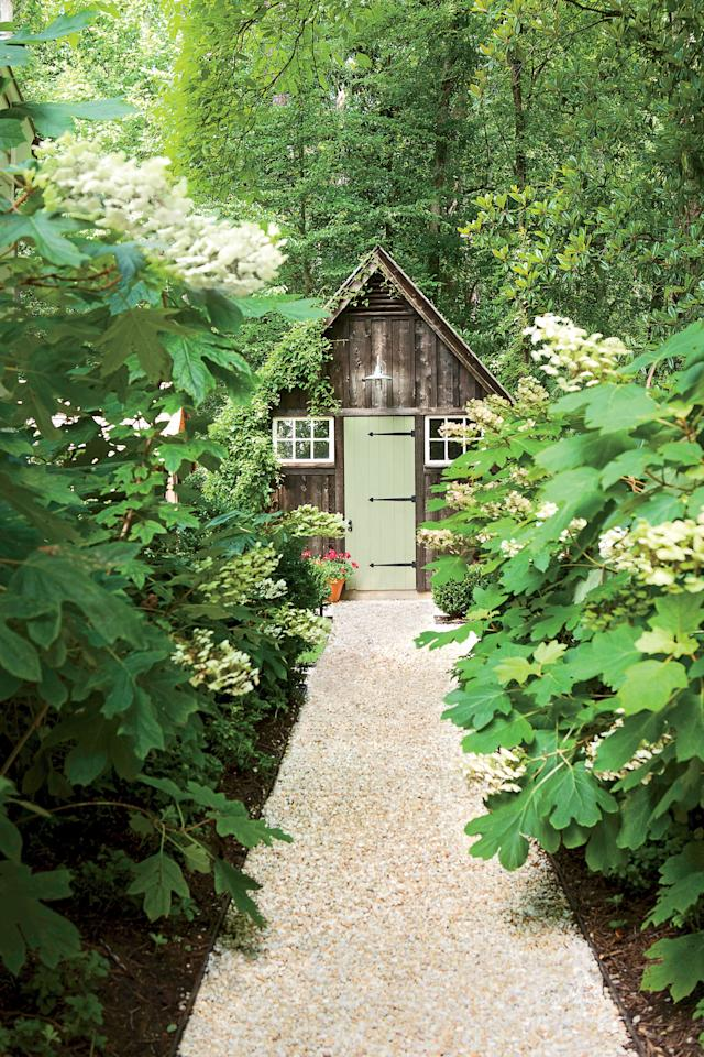 <p>You might find their cone-shaped blooms growing naturally in the woods of the Deep South. In fact, they're so naturally prevalent in this part of the country that oakleaf hydrangeas were named the state wildflower of Alabama.</p>