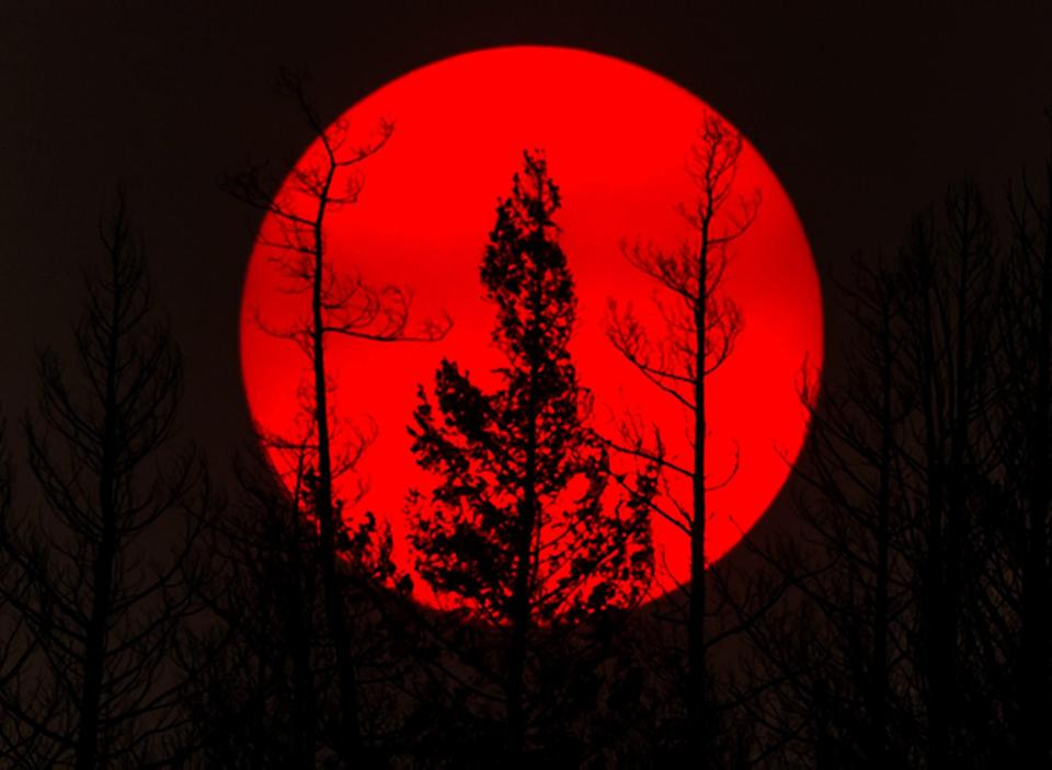 <p>Smoke from wildfires obscrues the sun in British Columbia. (Rex features) </p>