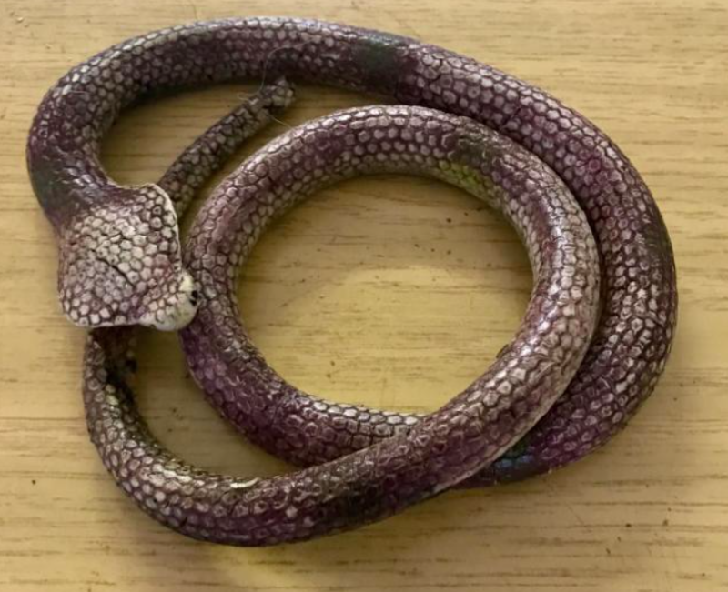 The rubber toy was at first thought to be a venomous snake (RSPCA)