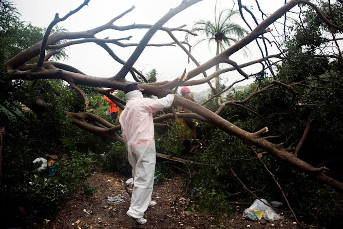 Fire and rescue members cut the branches of a tree that fell under the heavy rain caused by Storm Isaias, then a tropical storm, in Santo Domingo, Dominican Republic, on July 30, 2020.