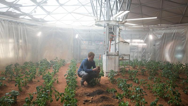 Bioengineered bacteria could be used to 3D print food and tools on Mars