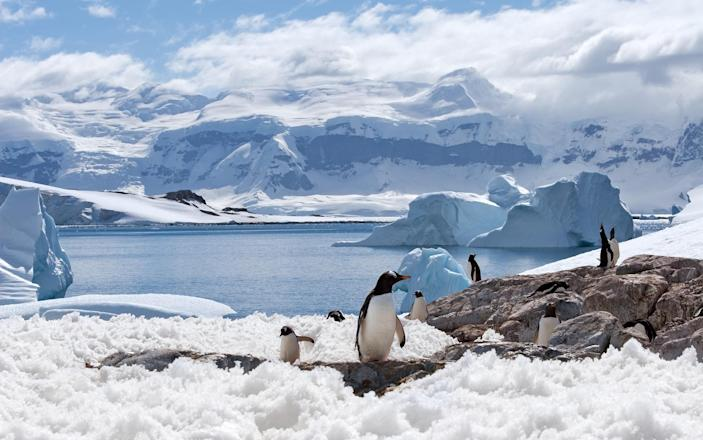 One vast stretch of the planet remains beyond our grasp: Antarctica - Photodynamic