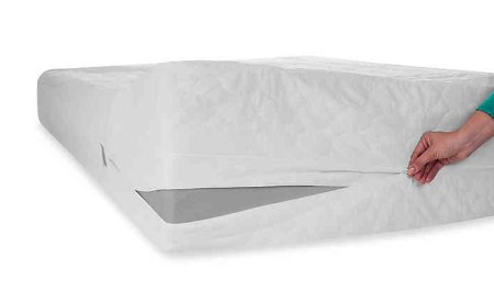 Remedy Bed Bug and Dust Mite Mattress Protector in White