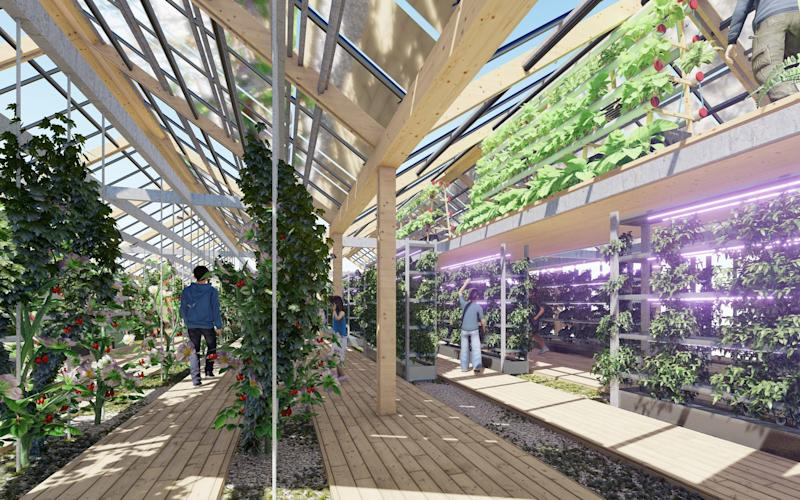 The neighbourhood will also include greenhouses and gardens capable of growing fruit and vegetables - Guallart Architects