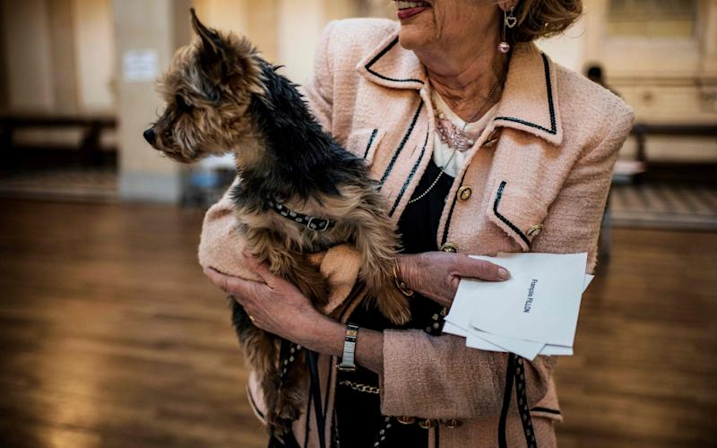 A woman carries her dog as she cast her vote at a polling booth in Lyon - Credit: JEFF PACHOUD/AFP
