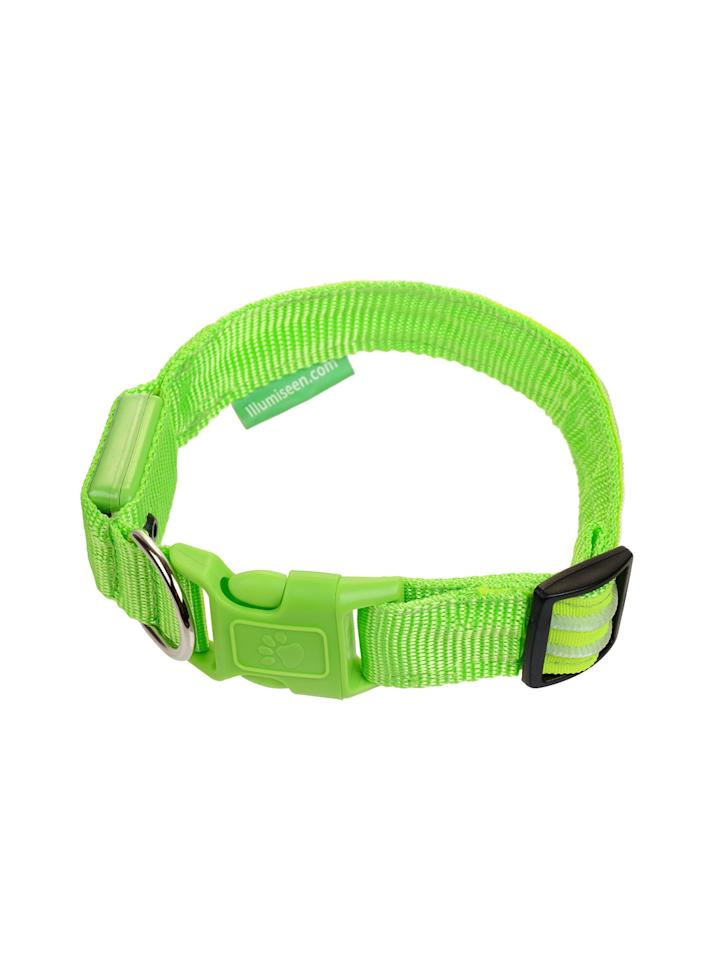 """<p>This rechargeable LED collar can be set to blink or give off a steady glow, making your pup visible to cars, cyclists, and joggers at night.<br /> <br /> <strong>To buy:</strong> Illumiseen collar, $31; <a rel=""""nofollow"""" href=""""https://www.amazon.com/LED-Dog-Collar-Rechargeable-Large/dp/B00UAINMMK/ref=sr_1_2?ie=UTF8&qid=1487701282&sr=8-2&keywords=illumiseen+dog+collar"""">amazon.com</a>.</p>"""