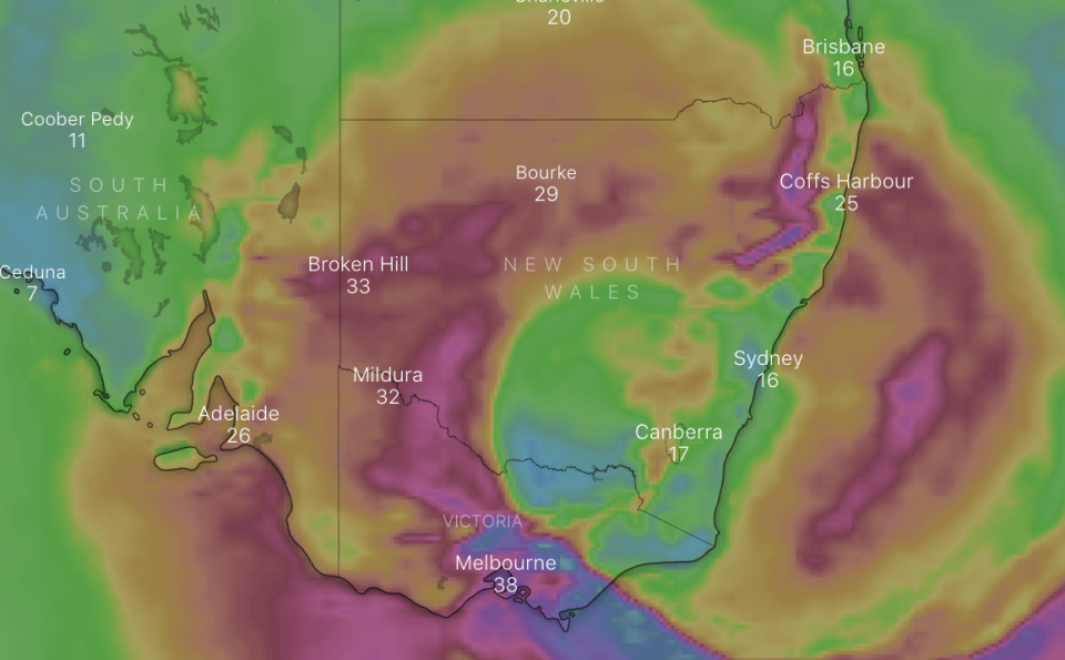 The dark purple areas show the strongest wind gusts in Victoria. Source: Windy.com