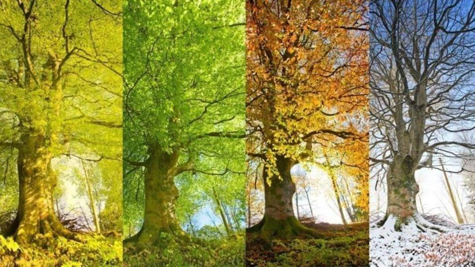 Follow these tips to avoid falling ill during season change