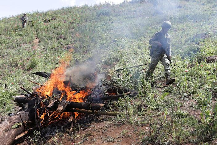 <p>Soldiers burn poppy plants during a military operation in the municipality of Coyuca de Catatlan in Mexico, April 18, 2017. (Photo: Henry Romero/Reuters) </p>