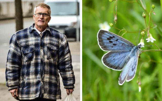 Phillip Cullen, appearing Bristol Magistrates' Court, is accused of six offences relating to Large Blue butterflies - Ben Birchall/PA