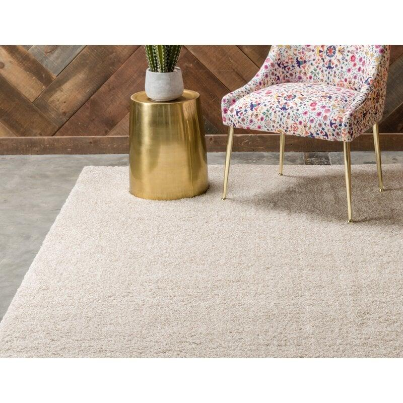 "<p>This neutral <product href=""https://www.wayfair.com/rugs/pdp/ebern-designs-zuniga-ivory-rug-w001472980.html"" target=""_blank"" class=""ga-track"" data-ga-category=""internal click"" data-ga-label=""https://www.wayfair.com/rugs/pdp/ebern-designs-zuniga-ivory-rug-w001472980.html"" data-ga-action=""body text link"">Zuniga Rug</product> ($31, originally $58) looks so soft, you won't even mind sitting on the floor. It's also stain resistant, which is a quality I should add to my checklist.</p>"