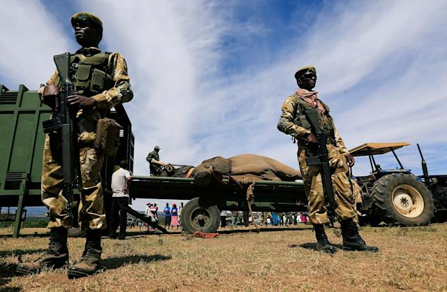 <p>Kenya Wildlife Service (KWS) rangers stand guard during an elephant translocation exercise to Ithumba Camp in Tsavo East National Park, in Solio Ranch in Nyeri County, Kenya, Feb. 21, 2018. (Photo: Thomas Mukoya/Reuters) </p>