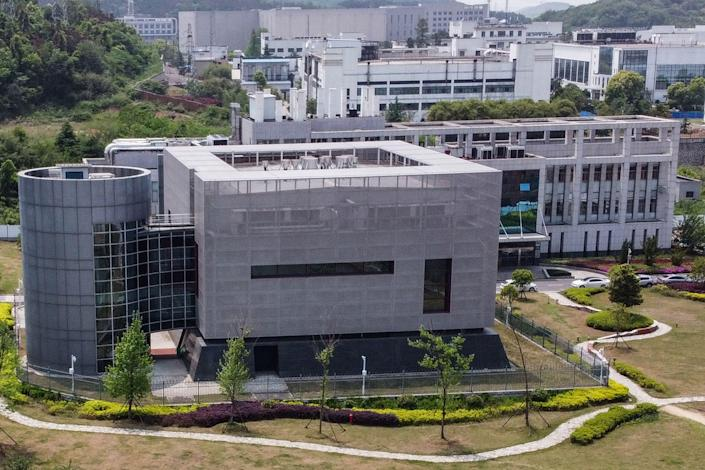 Scientists study diseases at the Wuhan Institute of Virology in China's central Hubei province.