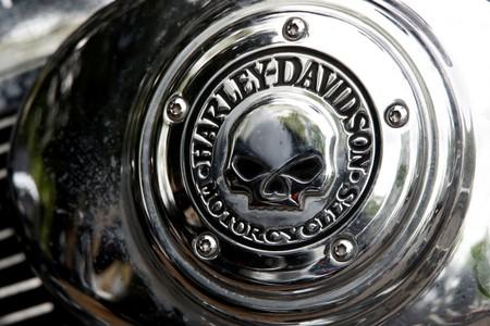 """FILE PHOTO: A Harley Davidson logo with a skull is seen on a motorcycle during a funeral service for a """"Hells Angels"""" member in Bonn"""