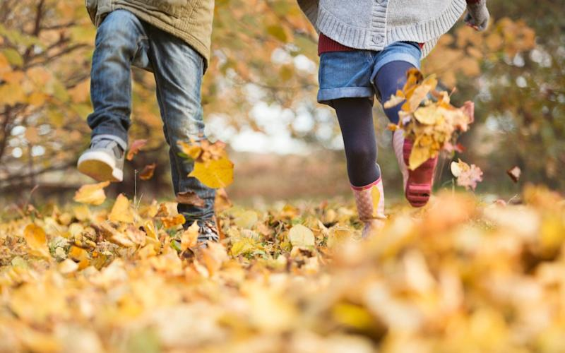 Autumn is the perfect time of year to get outdoors and enjoy the changing scenery - Getty Images Contributor