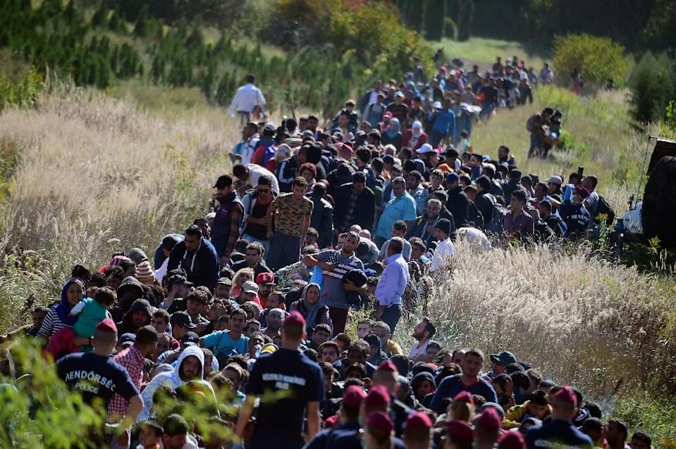 Migrants walk through the countryside after crossing the Hungarian-Croatian border near the village of Zakany to continue their trip north, on September 21, 2015 (AFP Photo/Attila Kisbenedek)