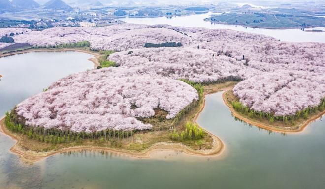 China aims to increase the amount of protected lands to about 18 per cent of its landmass by the end of the year. Photo: Xinhua