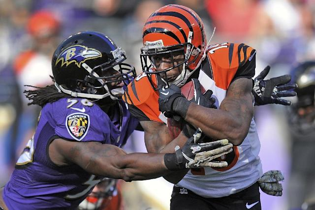 Baltimore Ravens inside linebacker Josh Bynes wraps up Cincinnati Bengals wide receiver Brandon Tate during the first half of a NFL football game in Baltimore, Sunday, Nov. 10, 2013. (AP Photo/Nick Wass)