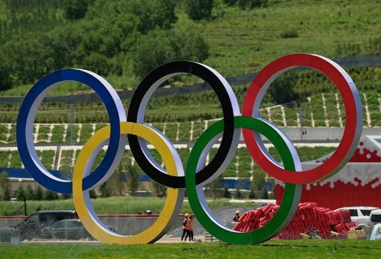 The 2022 Beijing Olympics, which is facing calls for a boycott from rights groups, is scheduled for February (AFP/Noel CELIS)