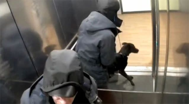 Barratt was seen kicking and punching the dog repeatedly in a bid to stop it from defecating inside the lift. Photo: Manchester Evening News