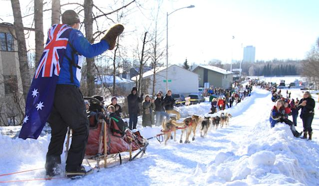 Musher Christian Turner, of Dorrigo, Australia, and wearing an Australian flag, waves to fans along the Cordova Street hill during the ceremonial start of the 2014 Iditarod Trail Sled Dog Race on Saturday, March 1, 2014, in Anchorage, Alaska. (AP Photo/Dan Joling)