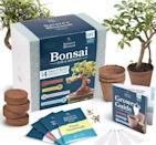 <p>This cool <span>Nature's Blossom Bonsai Garden Seed Starter Kit</span> ($21, originally $27) comes with everything you need to create your urban oasis. Gift it to the aspiring green thumbs you know.</p>