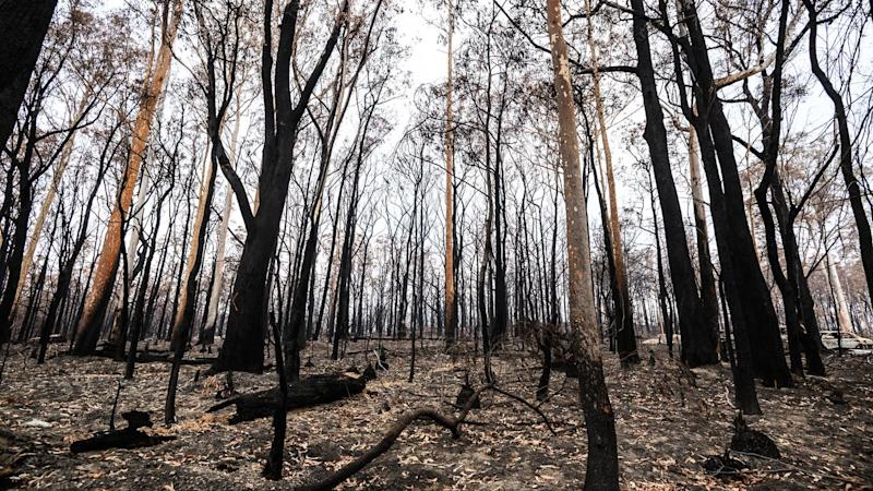 SALVATION ARMY BUSHFIRES SUPPORT