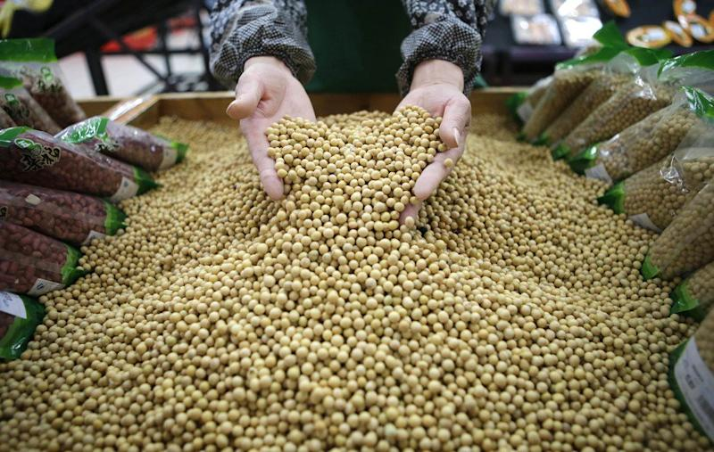 Russia offers 2.5 million acres of land to Chinese farmers, but will it ease Beijing's soybean shortage?