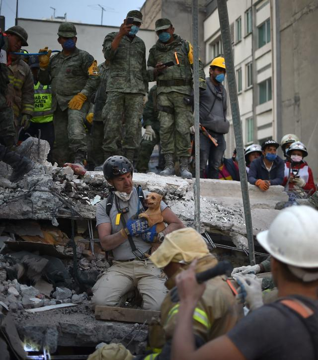 <p>A rescuer pulls a dog out of the rubble during the search for survivors in Mexico City on Sept. 20, 2017 after a strong quake hit central Mexico. (Photo: Yuri Cortez/AFP/Getty Images) </p>