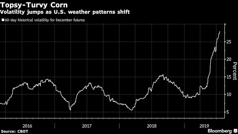 "(Bloomberg) -- A spring deluge that delayed U.S. planting sparked a big run higher in the corn market this year. Now traders are trying to determine how the crop might be affected by more wild weather.After the rain ended, conditions turned hot and dry spurring concern that plants would be stunted by the heat. Then, almost without warning, it rained again, sending corn prices tumbling. Now, traders are concerned the chaos will reign until the U.S. government issues its updated yield outlook on Aug. 12.While hedge funds increased their net-bullish bets as of July 16, much will depend on the weather moving forward. Crops are more vulnerable than normal to adverse weather this year because of the planting delays.""We've got to somehow navigate ourselves to a time when there's more solid information. That's what we're dealing with -- we have no idea what the U.S. yield is going to be,"" said Jerry Gidel, grain strategist and account executive at Price Futures Group in Chicago. ""You hope like heck that when you buy it too high that you can still get out"" and make money, he said.Higher temperatures can hurt corn just as it is reaching critical development stages that determine yield size. The broiling weather is at an extreme -- the world just had its all-time hottest June in data back to 1880, and it's likely 2019 will end as a top-five warmest year on record.""There are so many other cards stacked against the crops this year it could be a problem,'' with more hot weather in the forecast, said Brad Rippey, a meteorologist with the U.S. Department of Agriculture. ""Corn leaves are rolling under conditions that would be considered normal for this time of year. It shows the vulnerability for crops in the Midwest this year to any weather extremes.''Corn prices are up about 16% in 2019 because of the wild weather, and hedge funds are betting the trend will continue.In the week ended July 16, investors' net-long positions expanded to 187,260 futures and options, according to U.S. Commodity Futures Trading Commission data published Friday. The holding, which measures the difference between bets on a price increase and wagers on a decline, reached a three-week high.But the overall move in positions was minuscule, underscoring the caution surrounding a market that's become so sensitive to daily weather changes. The net holding climbed by less than 0.1% as shorts fell 5.1% and longs slid 1.8%.Harvesting usually starts in September, and it might take at least that long before the market has a true sense of how corn will fare. Smaller-than-expected yields could spark another leg higher for prices amid good demand for U.S. exports. But if there's enough rain and temperatures start to cool again, it will mean a bumper crop at a time of plentiful inventories.""It's one of the hardest times of the year to be positive, because most of the time we are marching into a crop,"" said Don Roose, president of U.S. Commodities Inc. in West Des Moines, Iowa.\--With assistance from Brian K. Sullivan.To contact the reporter on this story: Michael Hirtzer in Chicago at mhirtzer@bloomberg.netTo contact the editors responsible for this story: James Attwood at jattwood3@bloomberg.net, Millie Munshi, Patrick McKiernanFor more articles like this, please visit us at bloomberg.com©2019 Bloomberg L.P."