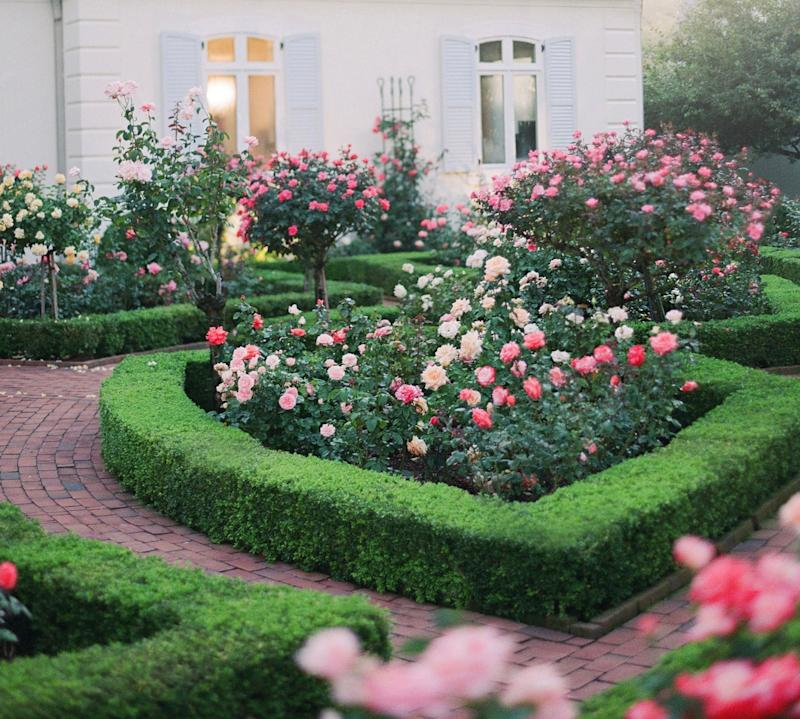 Upon arrival, our guests made their way through the rose garden and down to the aisle.