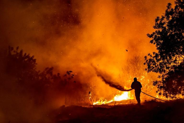 A firefighter battles the flame in a forest on the slopes of the Throodos mountain chain, as a giant fire rages on the Mediterranean island of Cyprus