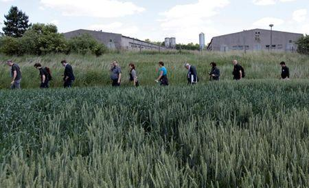 FILE PHOTO: Participants of the European Meeting of Antiracist Leaders walk past a pig farm, situated at the site of a former Roma concentration camp, to commemorate victims of the Holocaust during World War Two in the village of Lety June 13, 2014. REUTERS/David W Cerny/File Photo
