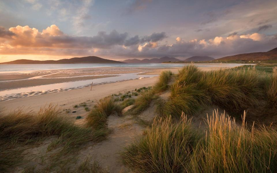 'Machair' is the Gaelic word for fertile, low-lying grassy plain, with the habitats only found on the exposed west-facing shores of Scotland and Ireland - Getty