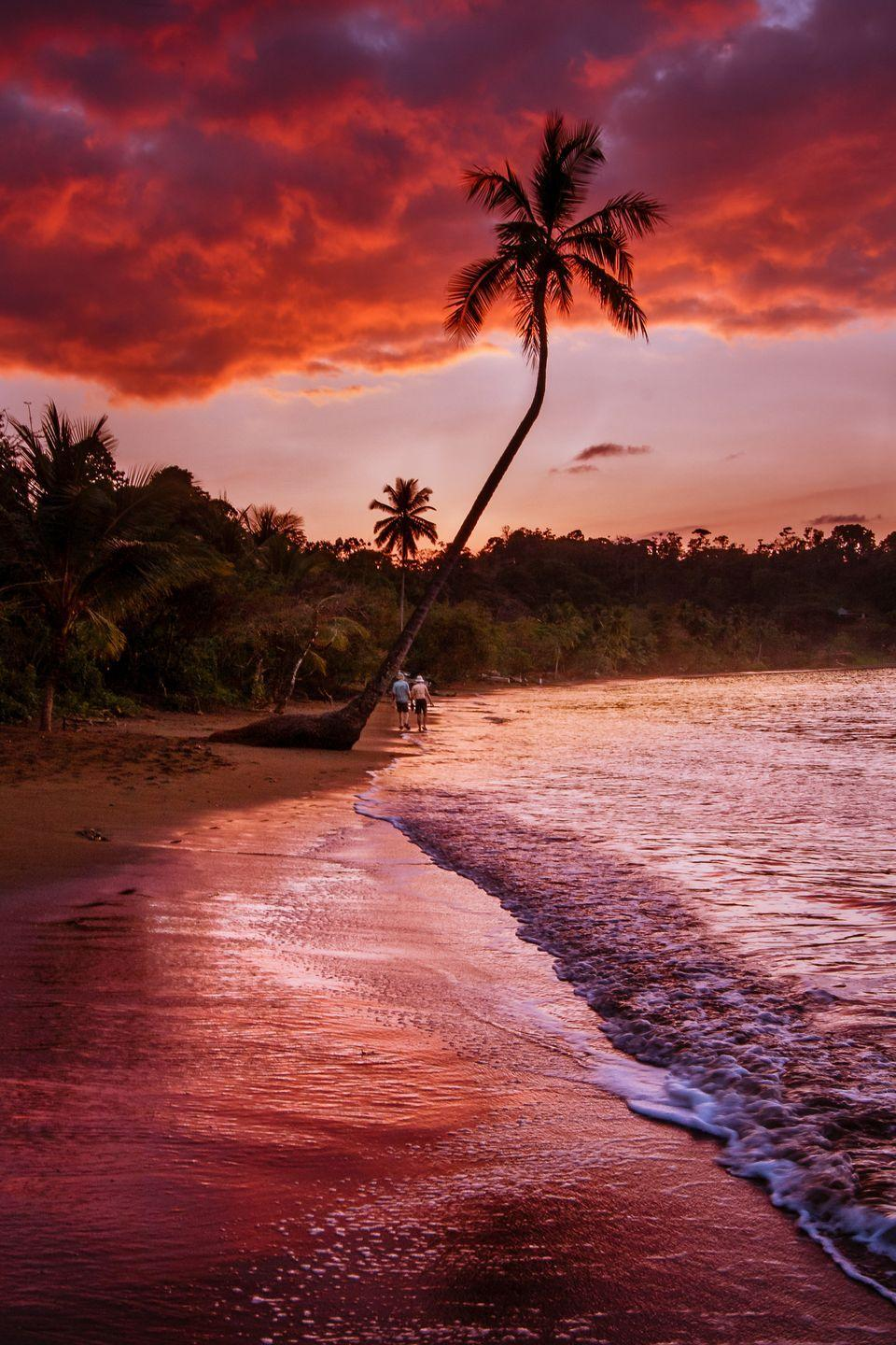 <p>The combo of the stunning red sky and palm trees in this Costa Rican haven definitely make us want to walk the beach at dawn. </p>