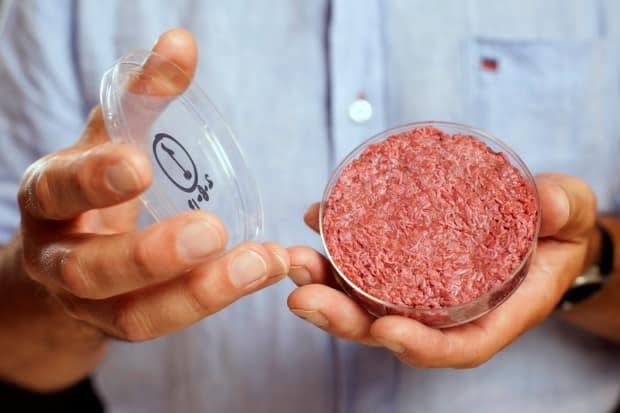 Dutch scientist Mark Post shows off the world's first lab-grown beef burger during a launch event in London in August 2013.  (David Parry/Pool/Reuters - image credit)