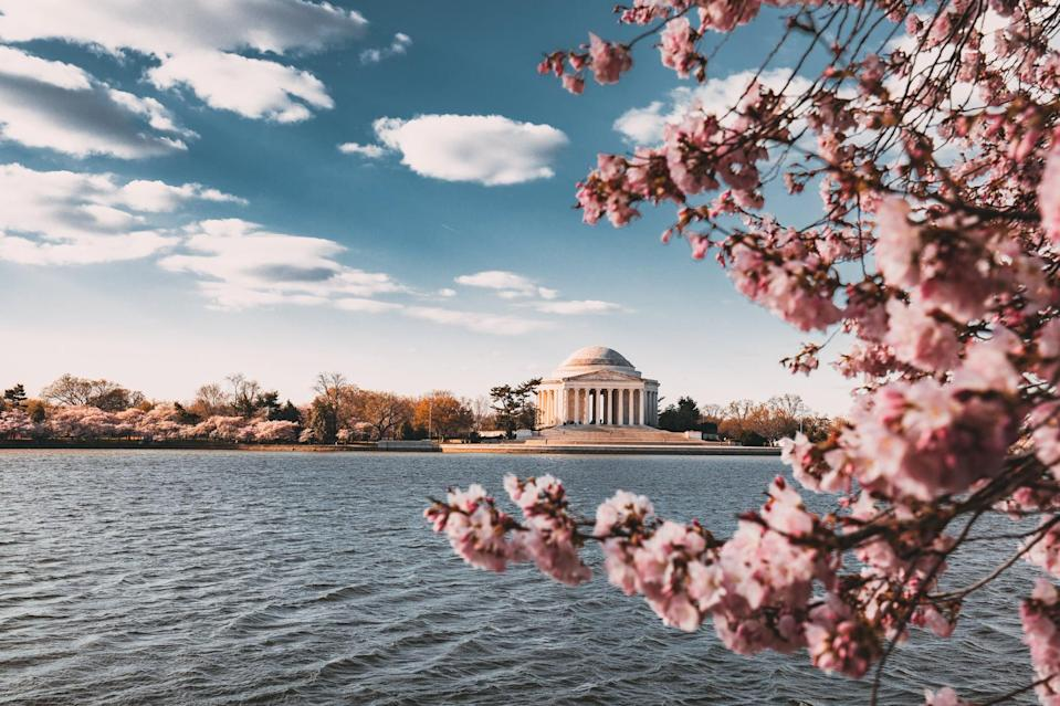 "<p>Washington DC is a magnet with a work hard, play hard vibe. There are dozens of spots for Instagram-worthy cocktails such as <a href=""http://servicebardc.com/"" class=""link rapid-noclick-resp"" rel=""nofollow noopener"" target=""_blank"" data-ylk=""slk:Service Bar"">Service Bar</a>, <a href=""http://www.michaelmina.net/restaurants/metro-dc-area/bourbon-dc/"" class=""link rapid-noclick-resp"" rel=""nofollow noopener"" target=""_blank"" data-ylk=""slk:Bourbon Steak"">Bourbon Steak</a>, or <a href=""http://www.delmardc.com/"" class=""link rapid-noclick-resp"" rel=""nofollow noopener"" target=""_blank"" data-ylk=""slk:Del Mar"">Del Mar</a>. When visiting, stop by The Newseum, which has a gallery of Pulitzer Prize-winning photographs.</p>"
